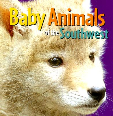 Baby Animals of the Southwest By Rising Moon (EDT)